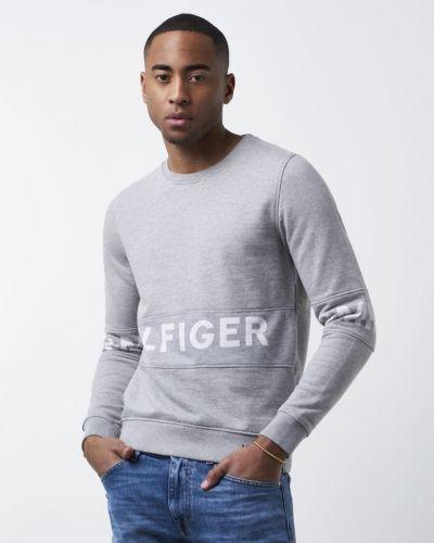 Sweatshirts från Hilfiger Denim till killar.