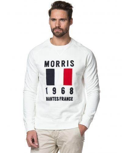 Campbell Sweatshirt Morris sweatshirts till killar.