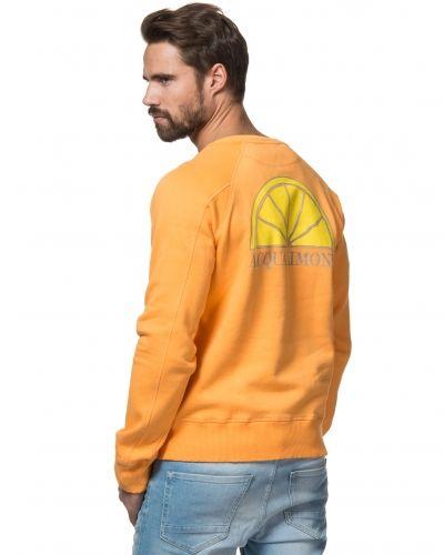 Till killar från Acqua Limone, en sweatshirts.