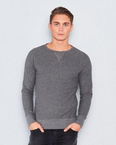 Grå sweatshirts från Dstrezzed till killar.