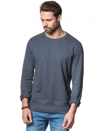 Till killar från Tiger of Sweden Jeans, en blå sweatshirts.