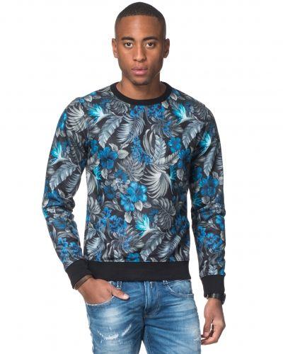 Till killar från Replay, en svart sweatshirts.