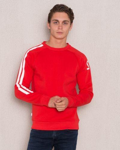 Sweatshirts från Mouli till killar.