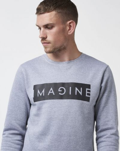 Imagine Sweater Grey Speechless sweatshirts till killar.