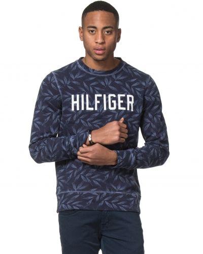 Till killar från Tommy Hilfiger, en sweatshirts.