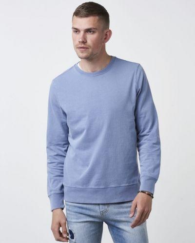 Whyred sweatshirts till killar.