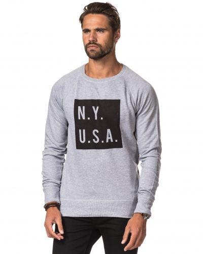 Sweatshirts från Speechless till killar.