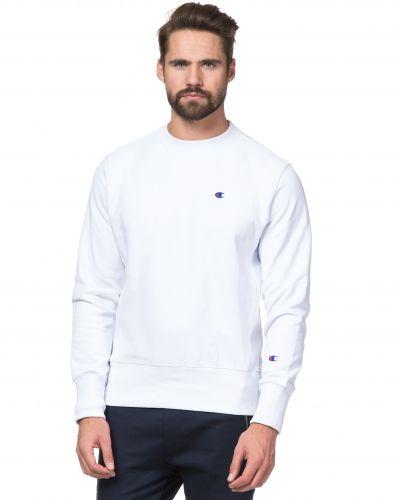 Champion sweatshirts till killar.