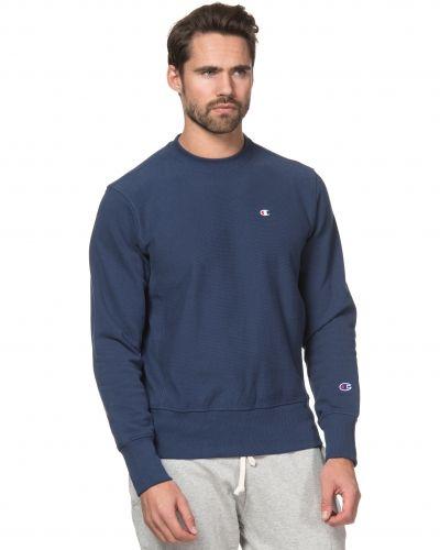 Sweatshirts från Champion till killar.