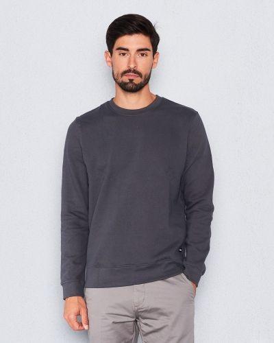 Sweatshirts från Dr.Denim till killar.