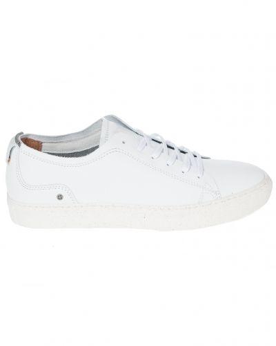 Sneaky Steve Tenley Sneaker White