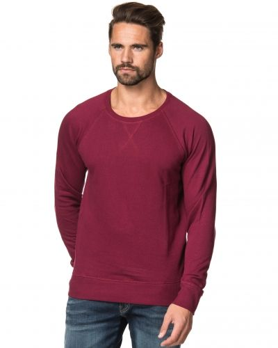 Kvarn Tor Sweater Burgundy