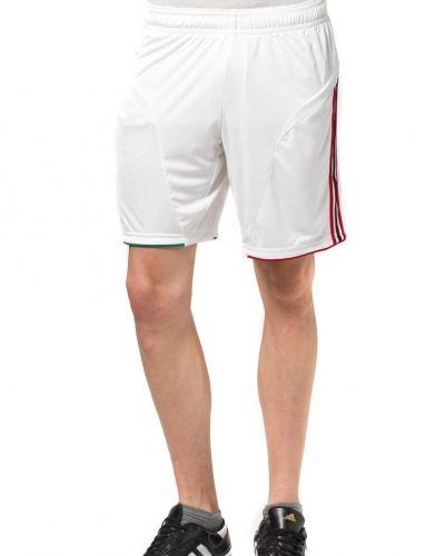 Acm short shorts från adidas Performance, Träningsshorts