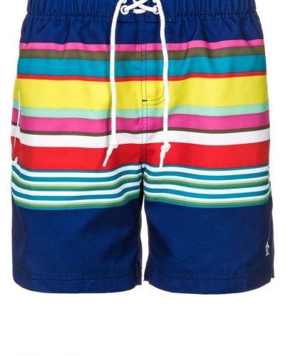 Original Penguin BARS AND STRIPES Surfshorts flerfärgad - Original Penguin - Badshorts