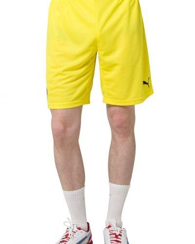 Puma BVB HOME REPLICA Klubbkläder Gult från Puma, Träningsbyxor med långa ben