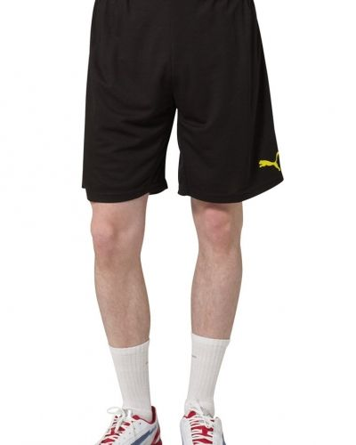 Puma Puma BVB HOME REPLICA Klubbkläder Svart. Traning-ovrigt håller hög kvalitet.