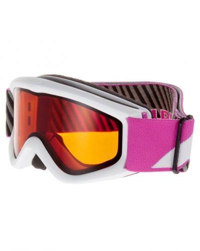 Alpina CARATRAT D Skidglasögon Vitt från Alpina, Goggles