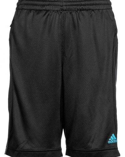 Cq short shorts från adidas Performance, Träningsshorts