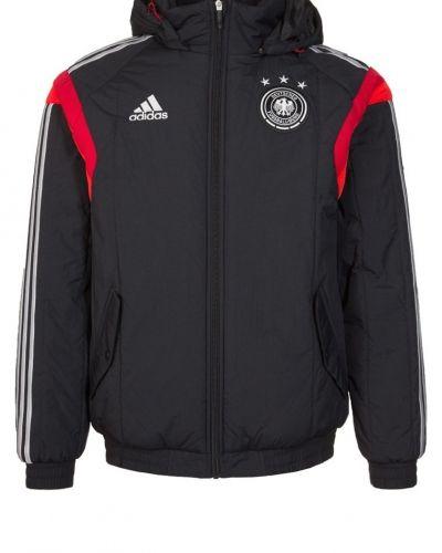 Dfb padded jacket outdoorjacka - adidas Performance - Regnjackor