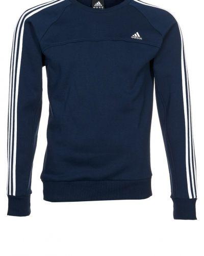 adidas Performance adidas Performance ESSENTIALS 3S CREW Sweatshirt Blått. Traningstrojor håller hög kvalitet.