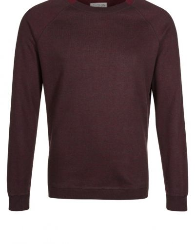 Uniforms for the Dedicated sweatshirts till killar.