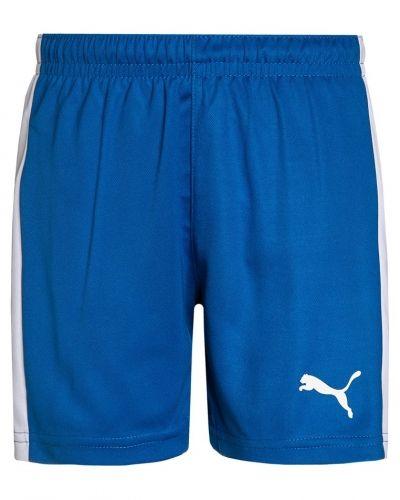 Puma shorts till dam.
