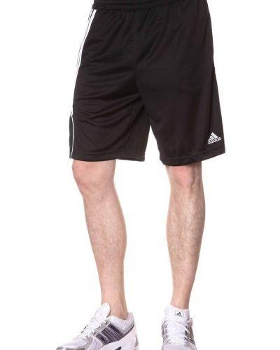 adidas Performance adidas Performance SERE11 TRG Shorts Svart. Traningsbyxor håller hög kvalitet.