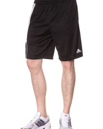 adidas Performance SERE11 TRG Shorts Svart - adidas Performance - Träningsshorts