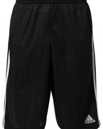 Shorts - adidas Performance - Träningsshorts