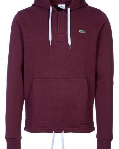 Lacoste Sweatshirt Rött från Lacoste, Långärmade Träningströjor