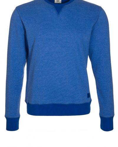 Till killar från Lee, en blå sweatshirts.