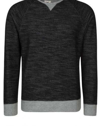 Sweatshirt Lee sweatshirts till killar.