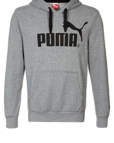 Puma TERRY Luvtröja Grått från Puma, Långärmade Träningströjor
