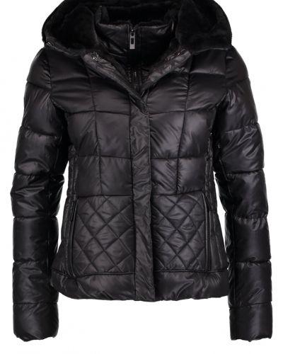 New Look New Look Vinterjacka black