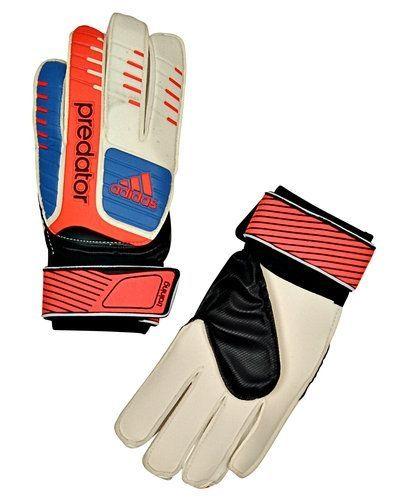 Adidas Predator Training målvakt handskar - Adidas - Målvaktshandskar