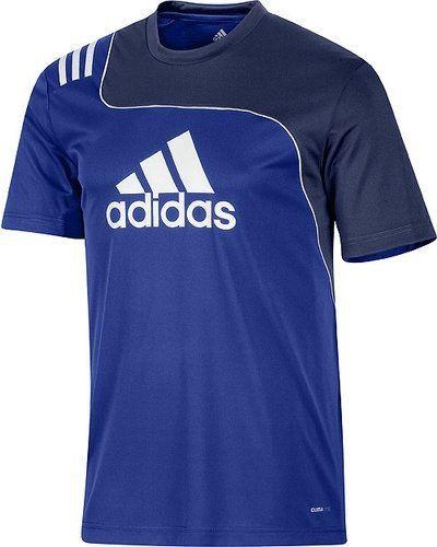 Adidas SERE11 TRG JSY V38026 000 COBALT/NEWNA från Adidas, Träningsjackor