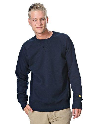 Carhartt sweatshirts till killar.