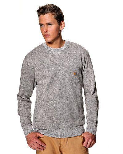 Carhartt sweatshirt Carhartt sweatshirts till killar.