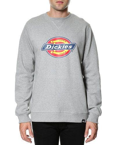 Dickies sweatshirts till killar.