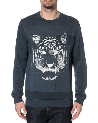 Diesel sweatshirts till killar.
