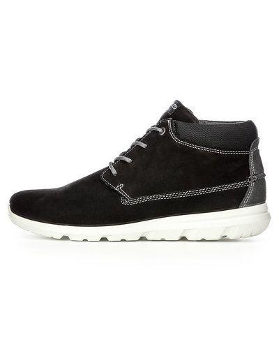 Till herr från ECCO, en svart sneakers.