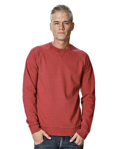 Gnious tröja Gnious sweatshirts till killar.