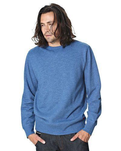 Till killar från Levis, en blå sweatshirts.