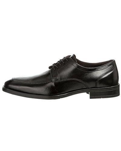 Playboy Footwear Playboy Footwear skor