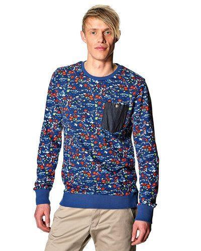 Till killar från Revolution, en blå sweatshirts.