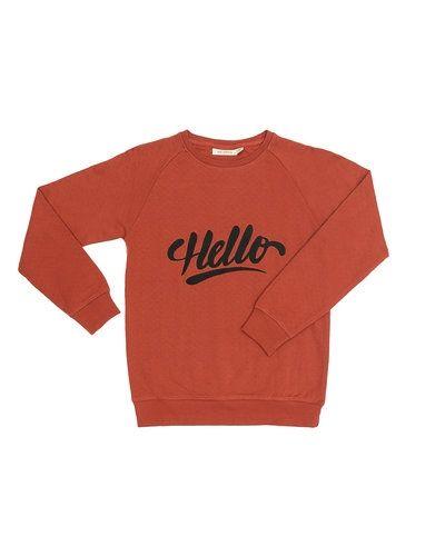 Brun sweatshirts från Soft Gallery till barn.