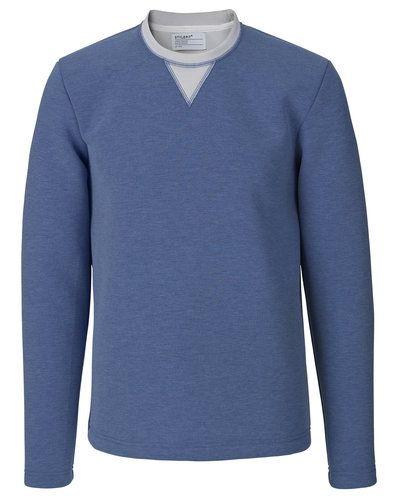 Blå sweatshirts från STYLEPIT till killar.