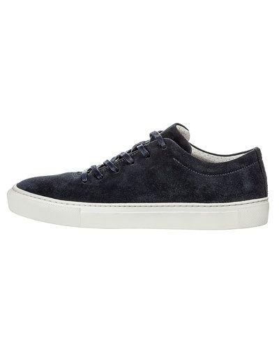 Till herr från Woden, en blå sneakers.