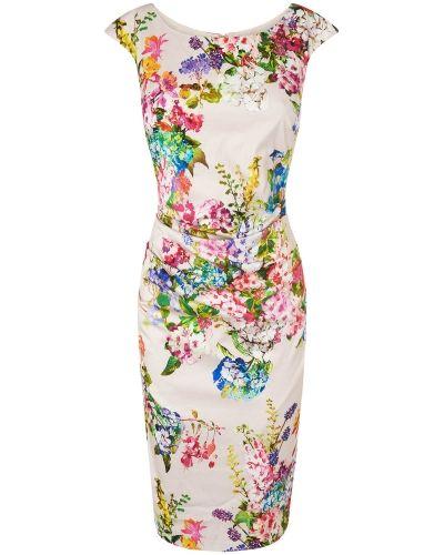 Phase Eight Chelsea Flower Print Dress