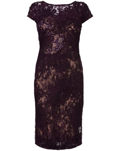 Phase Eight Gianna Lace Dress